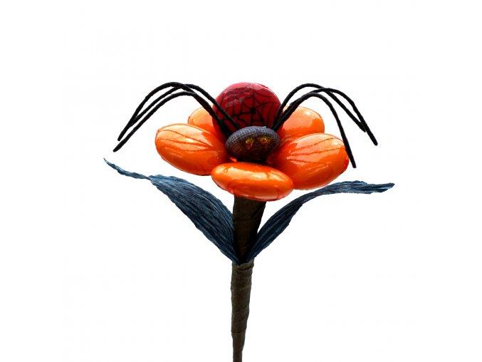Květina s pavoukem